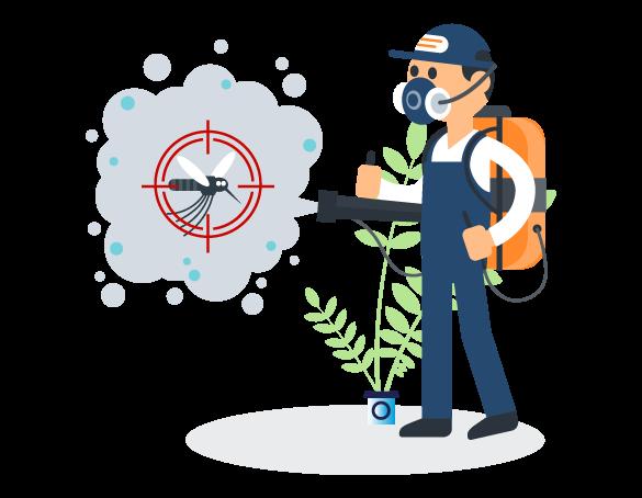 Professional Pest Control Greenslopes