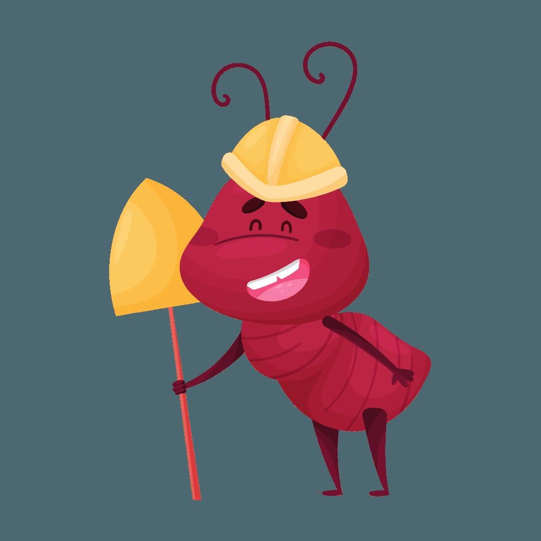 Termite Control Greenslopes